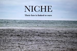niche-poster