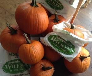pumpkinsforsoup