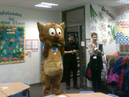 Murdock the MSC cat at Alban City School