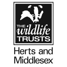 HMWT logo_SQUARE