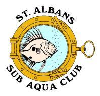 SASAC logo 1