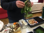 compost dandelion