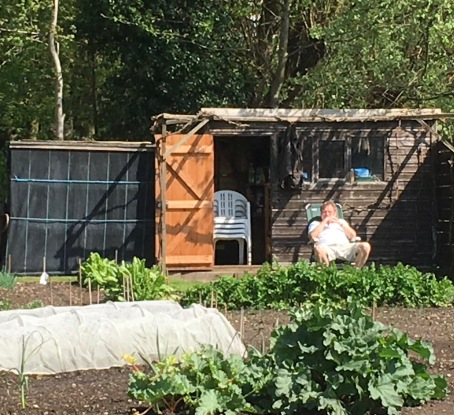 man and his shed