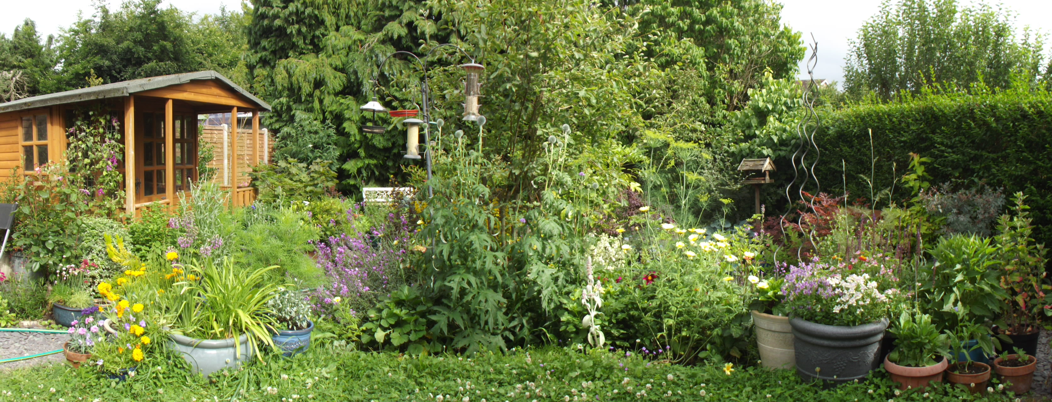 Open Food Gardens – Sustainable St Albans