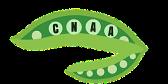 cnaa logo