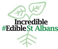 ie_st_albans_logo_05052017