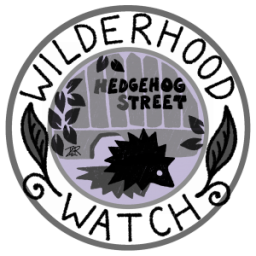 wilderhoodhedgehog