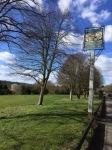 11-5- wheathampstead osv - melissa fields 4