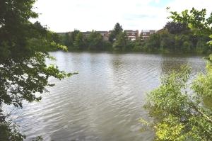 25-5 121 Broad_Colney_Lakes_2