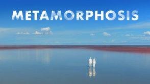 26-5 Metamorphosis-820x461