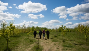 29-5 3 Heartwood Forest Legacy Event (13 of 27)
