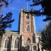 multi 119 - st peters churchyard - no daffodil