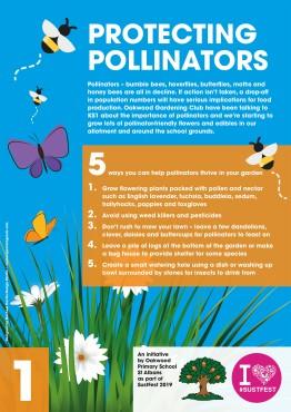 1.protecting pollinators