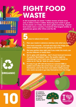 10. Fight food waste
