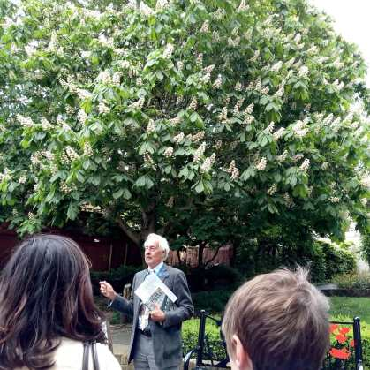 Tree Tour at St Albans Cathedral