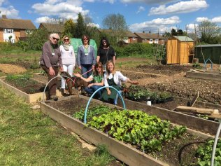 Open Day at Plot 31 Community Garden, Harpenden