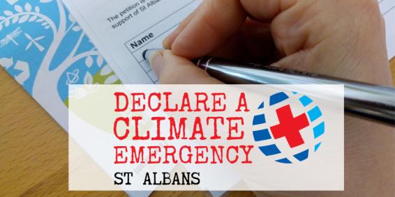 St Albans (1)
