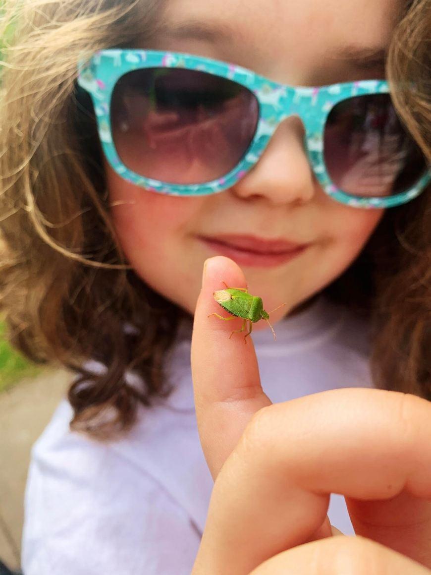 Lee Wood blog grasshopper photo 2 copy
