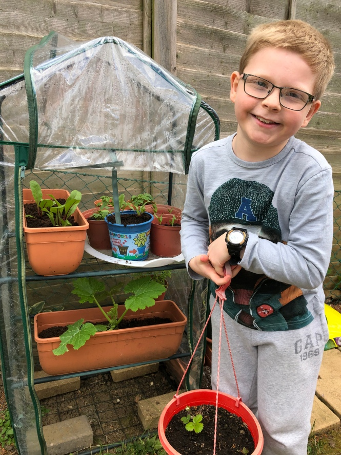 Lockdown competition - David age 9 and plants