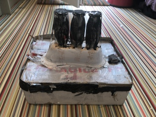 Lockdown competition - Ella age 9 recycled art