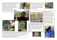 Lockdown competition - gardening by Edwyn age 11 copy