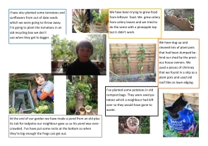 Lockdown competition - gardening by Edwyn age 11 copy