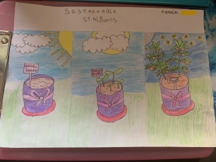 Lockdown competition - Meredith age 14 and tomato plants