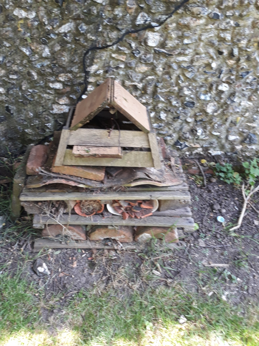 Lockdown competition - Oliver age 11 bug house