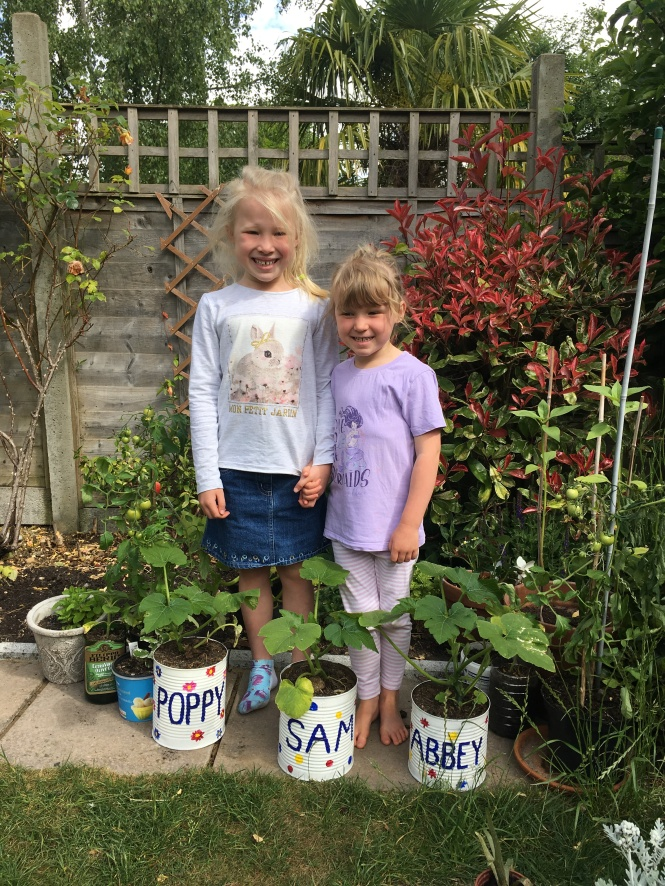 Lockdown competition - Poppy and Abby sunflowers