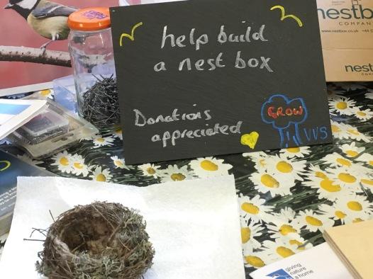 Build a bird box Love birds